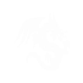 Marketing Dragon